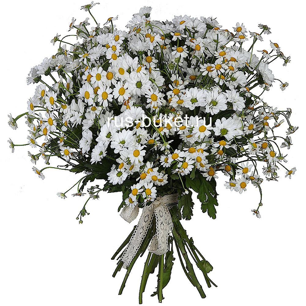 Пермь купить полевые цветы как закрепить живые цветы в волосах
